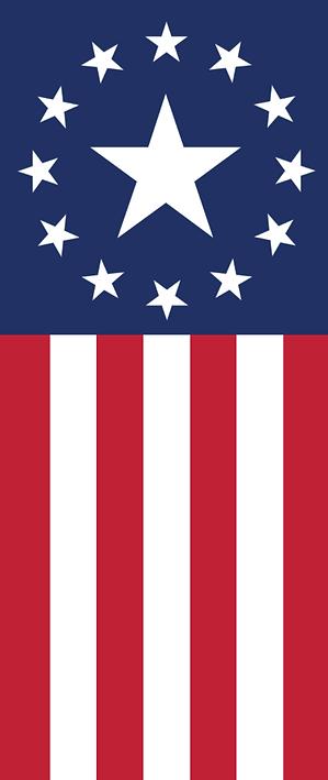 Screenshot of flag.png