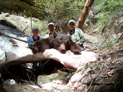 Utah Bear Hunt