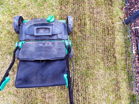Wertykulacja i aeracja. Czyli jak poprawić kondycje trawnika?