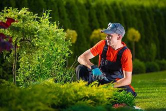 Creative Garden Designer. Professional G