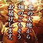 たまねぎ_edited.png