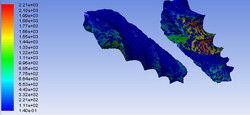 Simulation_1e07_-+wall_shear_stress_022_300