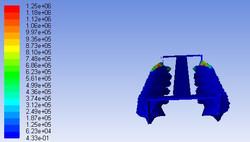 Simulation_1e07_-+pressure_dynamic_half