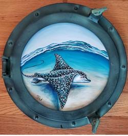 ray porthole