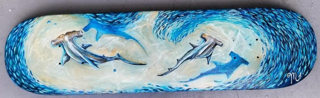 shark%20board_edited