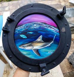 shark porthole