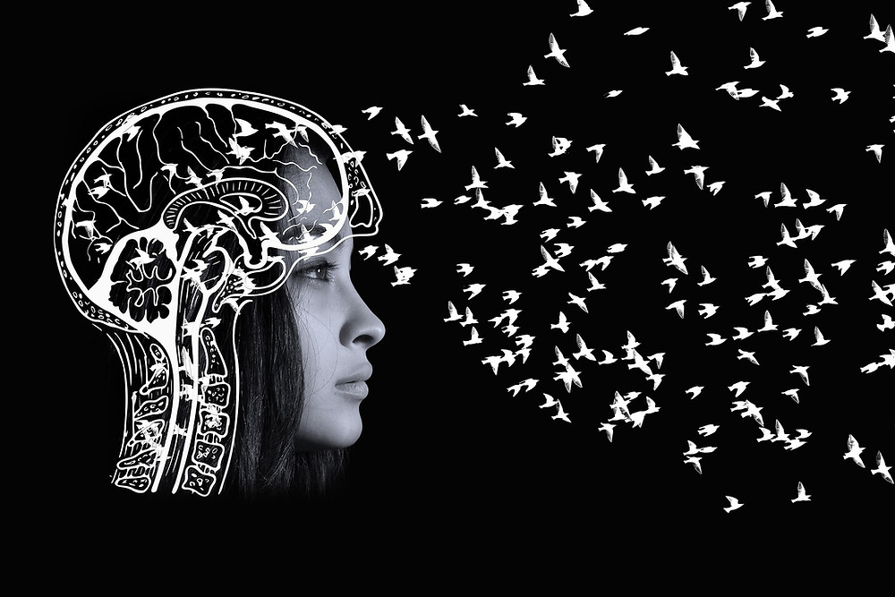 The face of a woman with an illustration of a brain in the foreground, with birds flying out the front of her skull. This represents the releasing of our negative, critical, overactive thoughts.