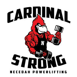 NECEDAH POWERLIFTING WEB  IMAGE SET UP-2