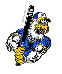 Clear Bkgd_Eagle logo-01.png