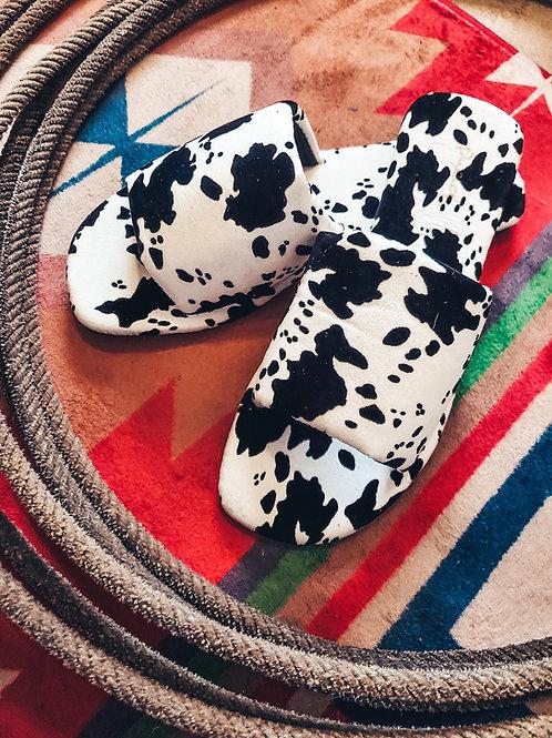 Cow Print Slides