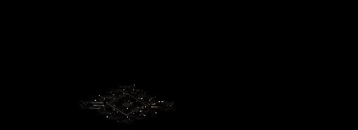 WildVogue pencil Logo.png