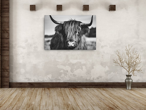 Highland Black & White Canvas