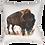 Thumbnail: Buffalo Throw Pillow