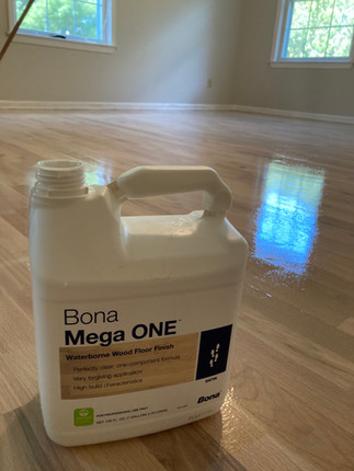Final Coat - Mega ONE