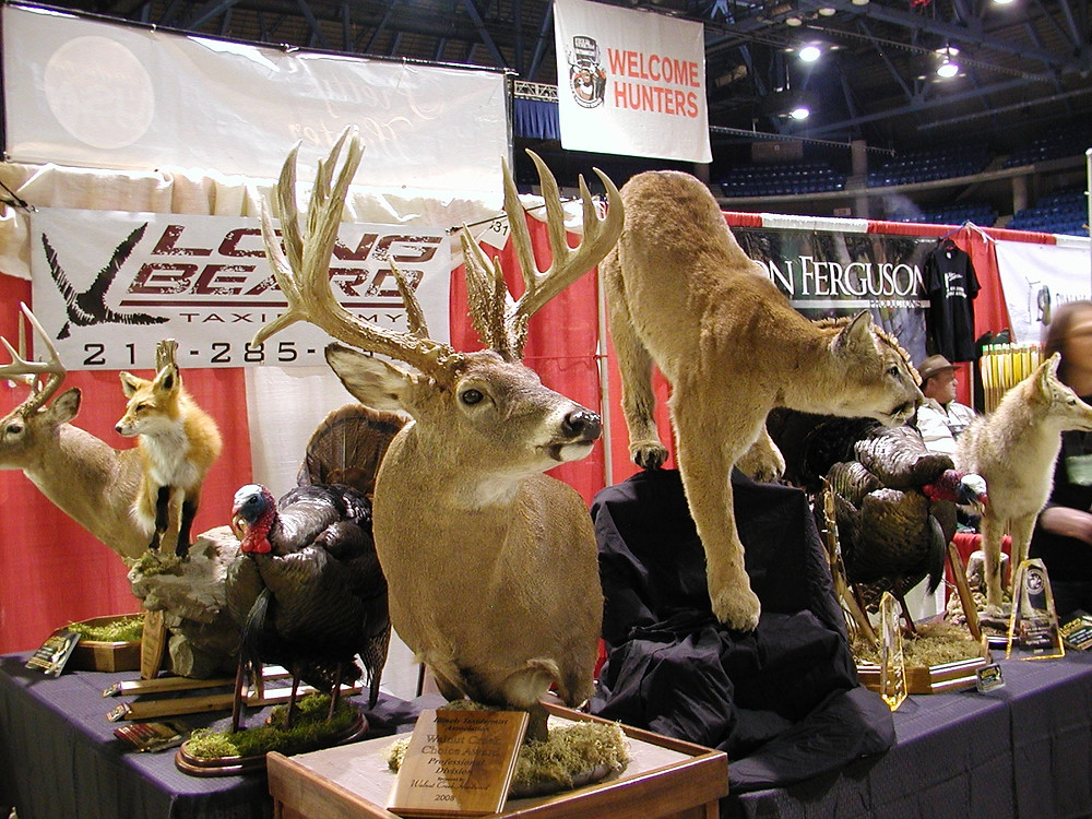 deerexpo02-21-14taxidermy.JPG