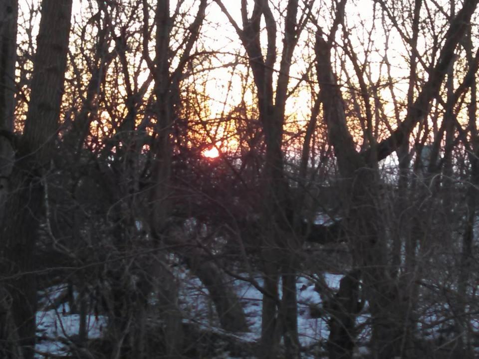 dawn03-09-15.jpg