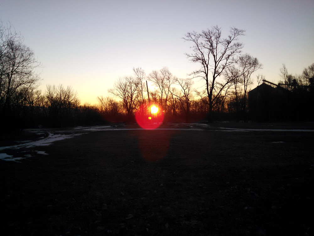 dawn01-30-15.jpg