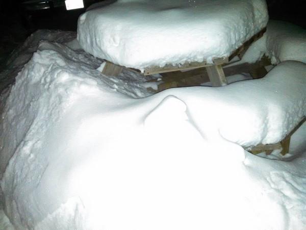 snow02-04-15.jpg