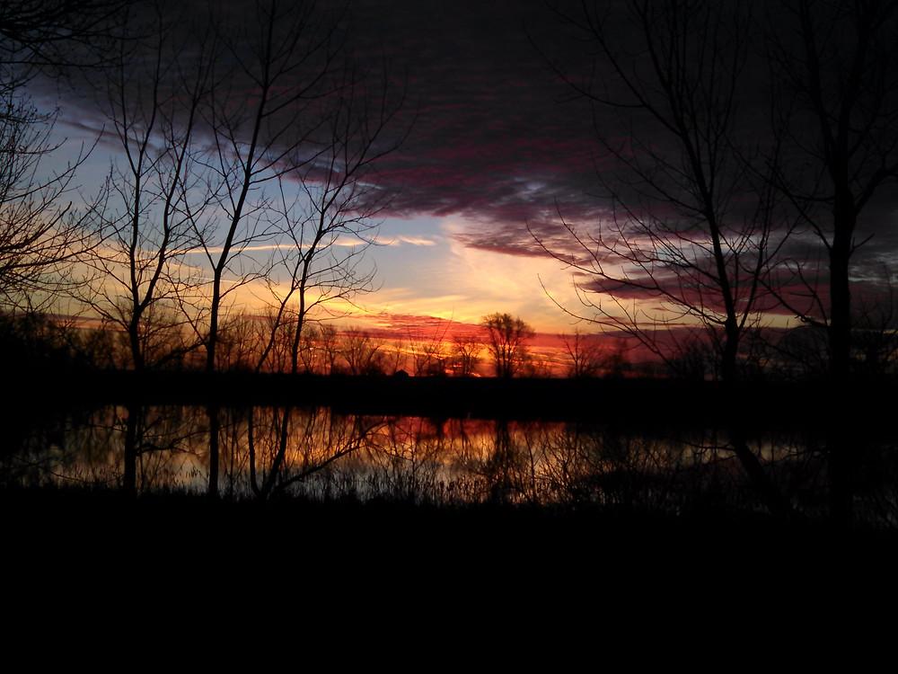 dawn03-18-15.jpg