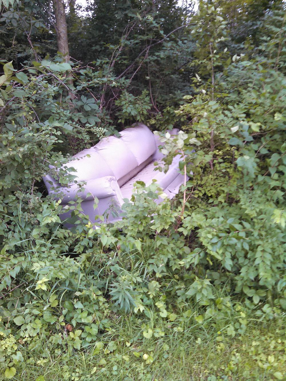 trash06-24-15sofa.jpg