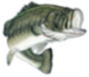 Kankakee River bass tournaments