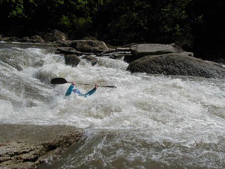 Cubs, Vermilion River float & dam: Stray Cast