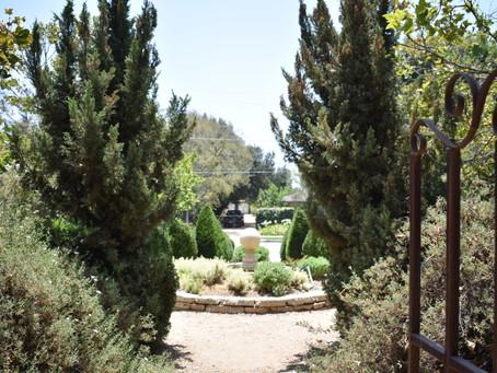 Project Spotlight: Arlington Garden