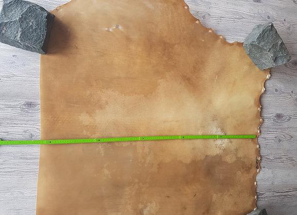 BisonRohhaut 1m²