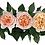 Thumbnail: Пионовидная роза  Джульетта Дэвида Остина