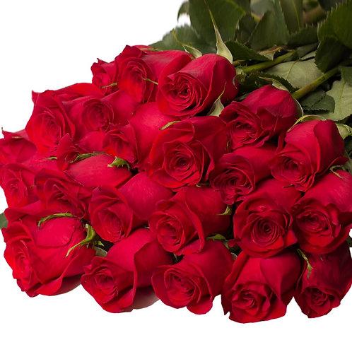 Бордовая роза 70-90 см