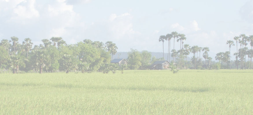 Village%20Life%20-%20Distant%20Rice%20fi