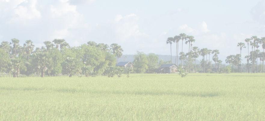 Village%20Life%20-%20Distant%20Rice%20fi