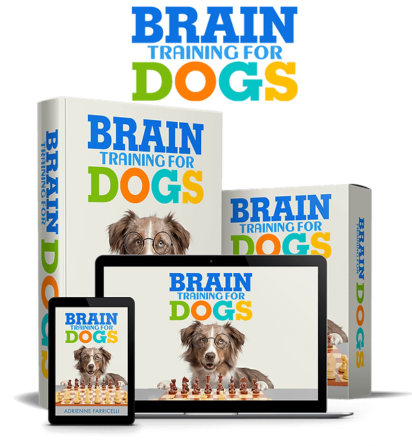 brain-training-dog-product.png