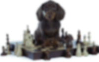 dog-chess.png