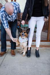 engagement session with dog ohio city