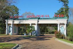 Jackson Zoo