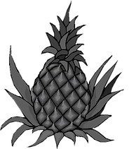 Pineapple-1.png