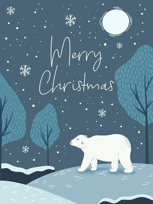 Christmas Card Pack of 12