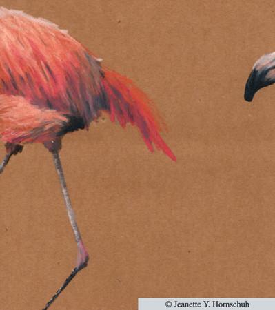 Flamingo hinten