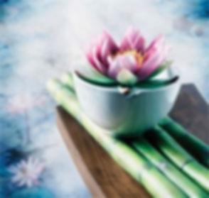 Lotus on Bamboo.JPG
