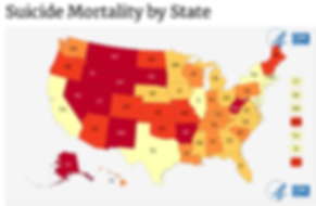 Suicide Rates in the US (CDC).png