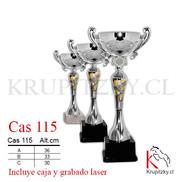 CAS 115.jpg