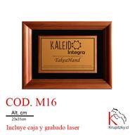 cod. m16.jpg