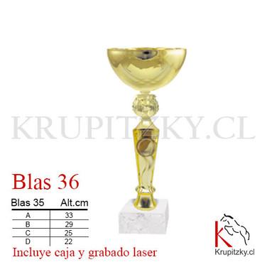 BLAS 36.jpg