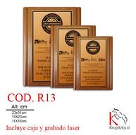COD. R13.jpg