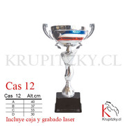 CAS 12.jpg