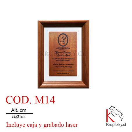 cod. m14.jpg