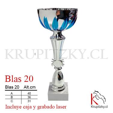 BLAS 20.jpg