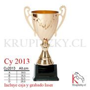 cY 2013.jpg