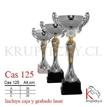 CAS 125.jpg